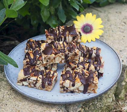 Nut and Cranberry Bars